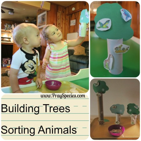 building trees and sorting animals