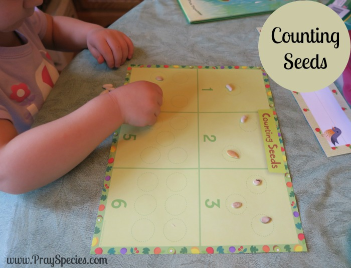 counting seeds with guided circles