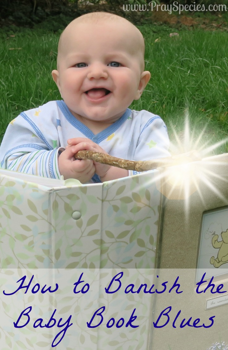 Have a baby book collecting dust? Me too friend! Here are some tips and tricks to keep those baby book blues away without giving up the dream of the perfect baby book.