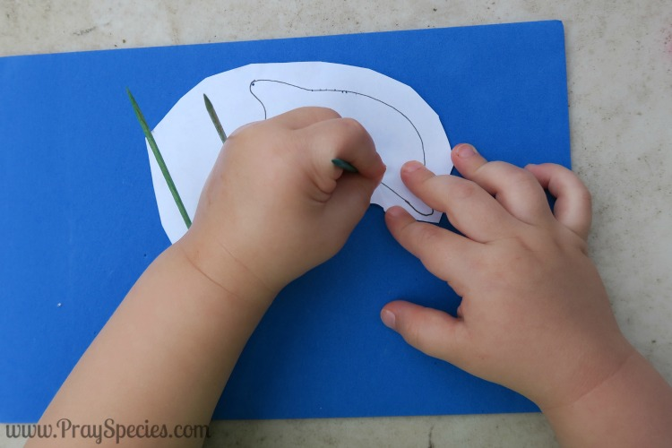 Owl fine motor making a dolphin