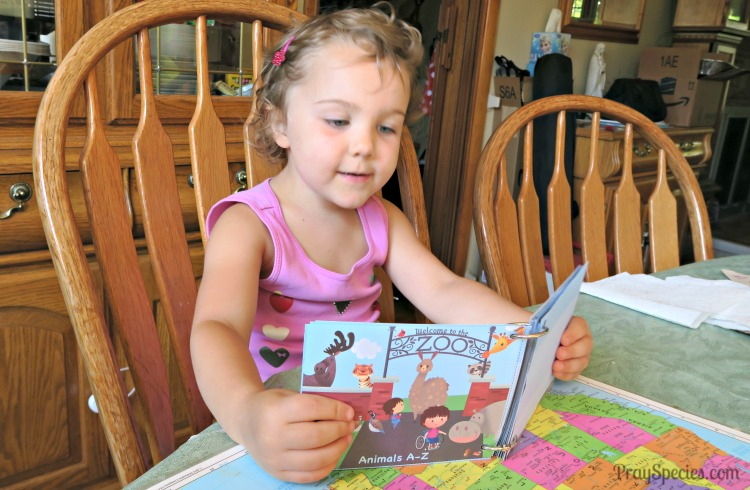 using the A to Zoo booklets as song books