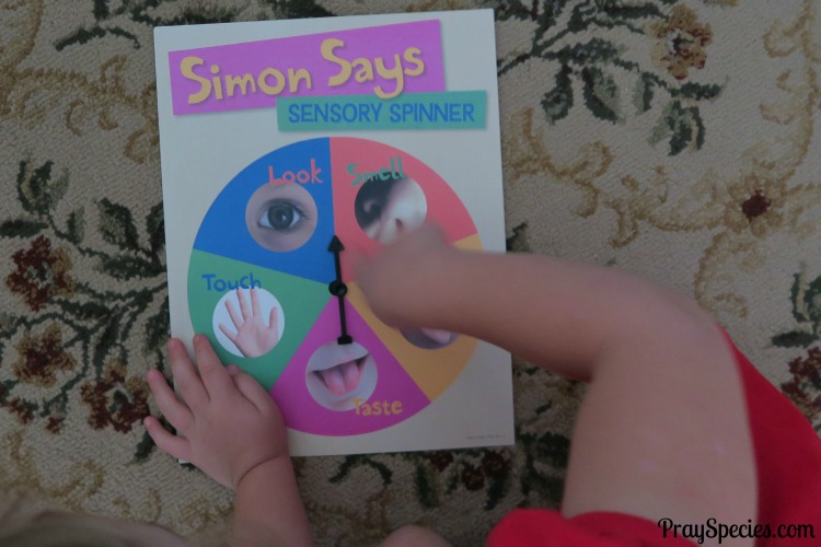 MGT Simon Says Sensory Spinner