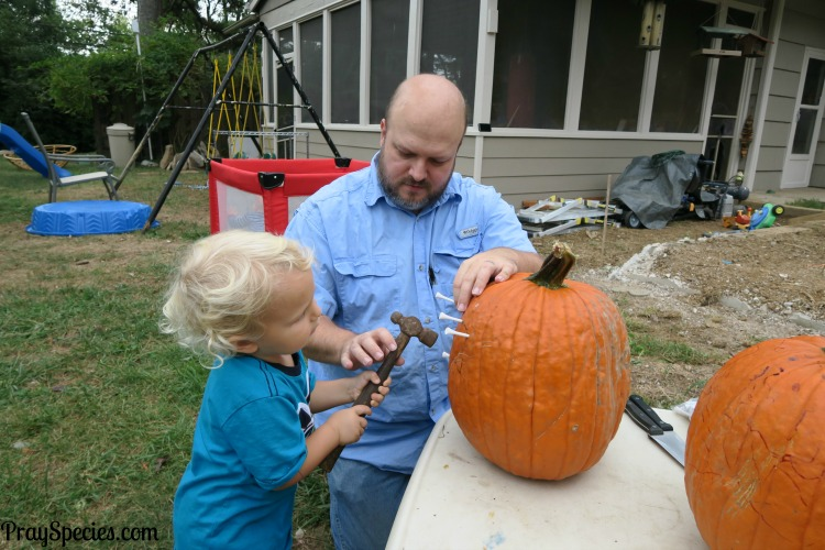 owl-hammering-his-design-on-his-pumpkin