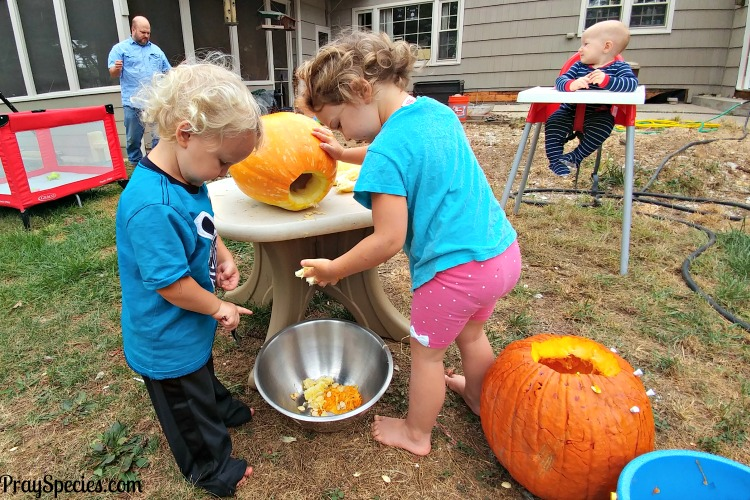 big-kids-exploring-our-homegrown-pumpkin