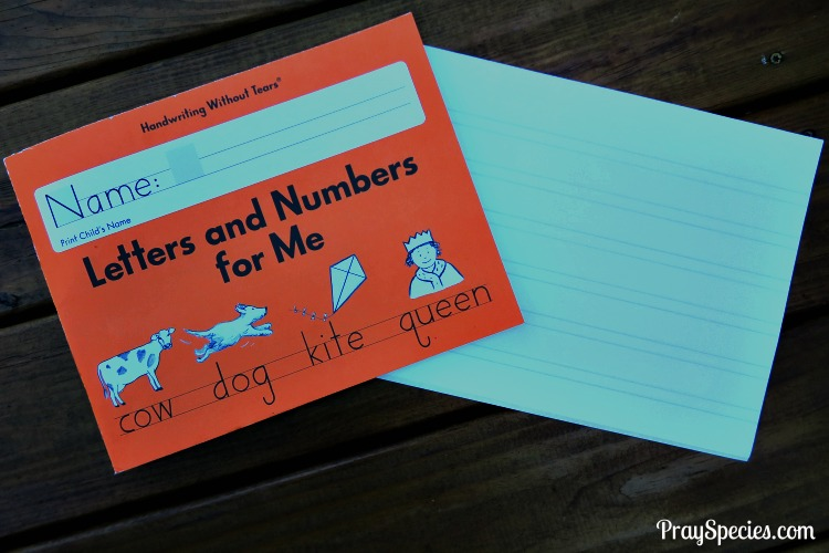 Handwriting Without Tears blends beautifully with Sonlight's Reading and Language Arts program.