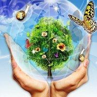«Береги природу — мать твою!» — слоганы и речевки к субботнику