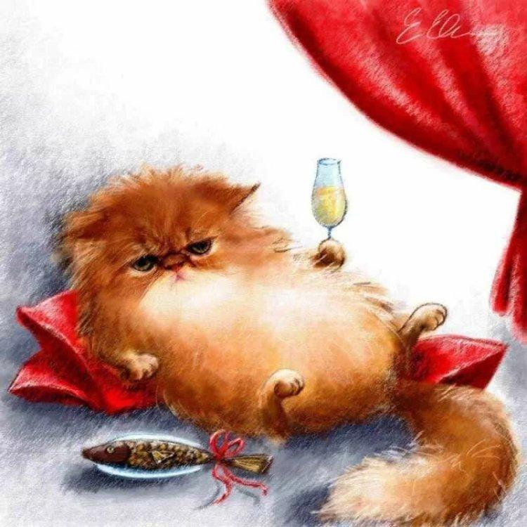 картинка с котом
