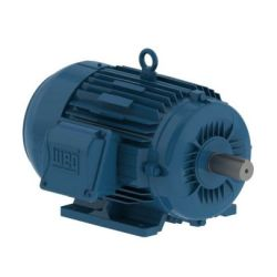 WEG W22 NEMA PREMIUM EFFICENCY MOTORS