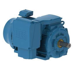 WEG TEFC SEVERE DUTY MEDIUM VOLTAGE MOTORS