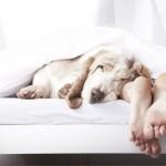 Как правильно засыпать и высыпаться, чтобы быть максимально эффективным?