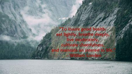 health quote 9