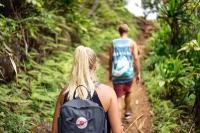 hiking_walking