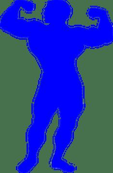 bodybuilder-295375__180