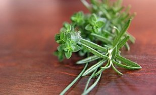 thyme_herb