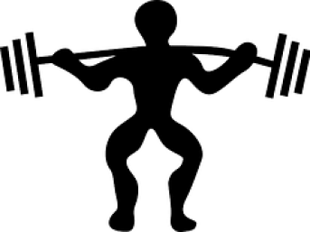 bodybuilding exercise