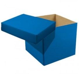 boxlid1