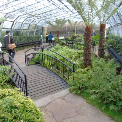 Aberdeen Trip Part 3 – Duthie Park and David Welch Winter Garden