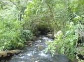 cours-d'eau