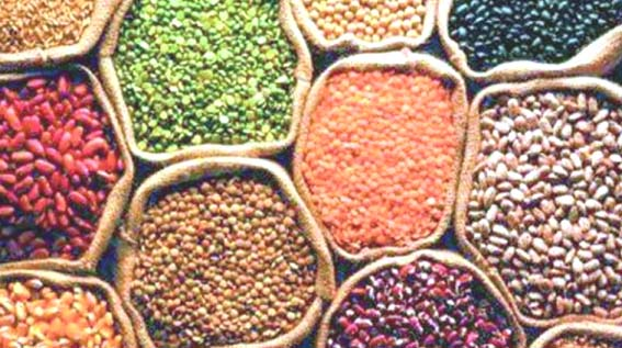 Foodgrains production may fall 1pc to 281.37 MT: Agri Min