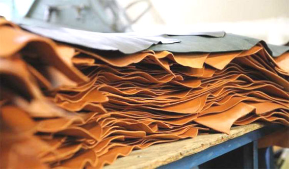 Huge leather export potential in Spain for domestic players: CLE