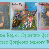 One Bag of Aquarium Gravel; Three Gorgeous Sensory Bins