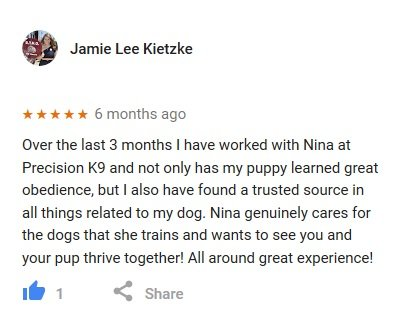 https://i1.wp.com/precisionk9work.com/wp-content/uploads/2018/07/google-review-jamie-lee-kietzke.jpg?w=1060