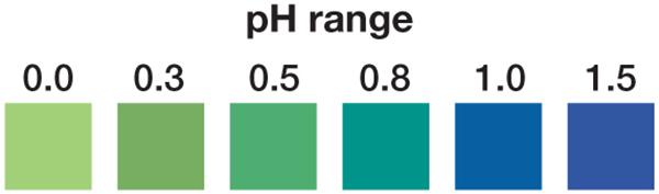 pH 0-1.5 test strips, pH test strips, acidic pH test strips