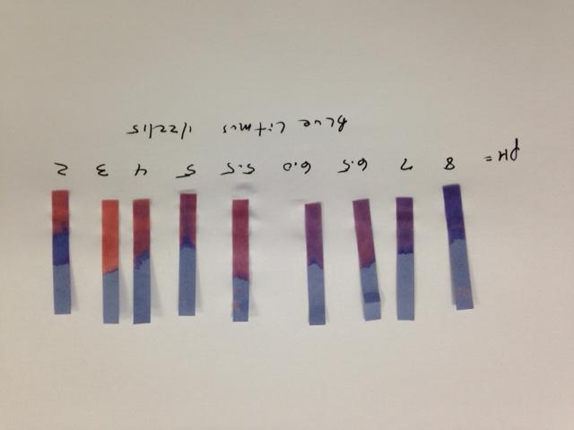 ph litmus paper scale