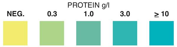 strips Protein test
