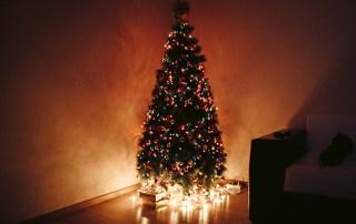 erupting christmas tree, science experiment, acid base reaction