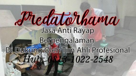 Jasa Anti Rayap Jakarta Barat I Hub : 0813-1022-2548