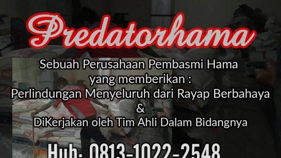 Perusahaan Jasa Anti Rayap Bogor I Hub:0813-1022-2548