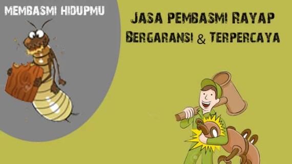 Perusahaan Jasa Anti Rayap Kayu Jakarta Timur