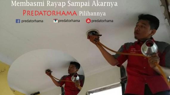 Jasa Tukang Basmi Rayap Jakarta
