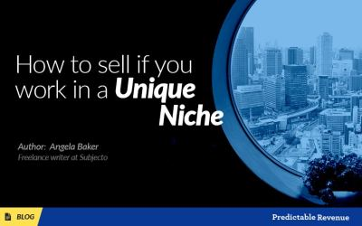 How to sell if you work in a unique niche