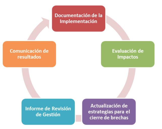 Figura 5. Revisión de la gestión del plan de mejora operativa