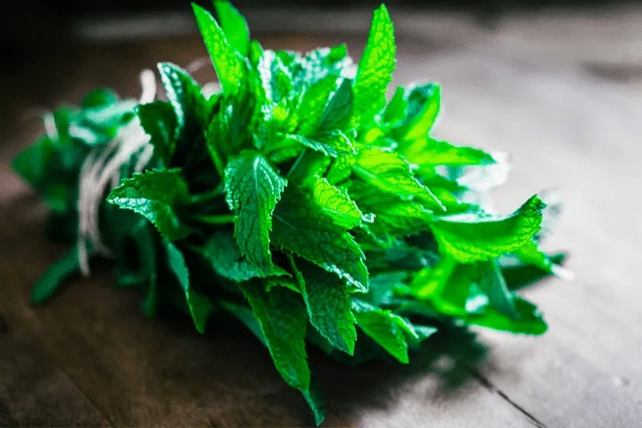 Peppermint could dry your supply, so consume it only if you're weaning your baby.