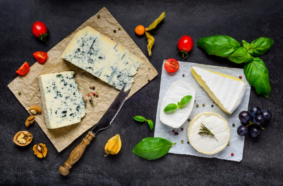 Two Different types of cheese, Blue Mold Gorgonzola cheese and Brie Soft Cheese