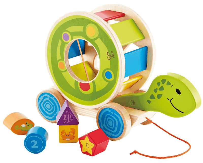 Non toxic wooden toy for baby. Pull toy shape sorter turtle with bright colors.