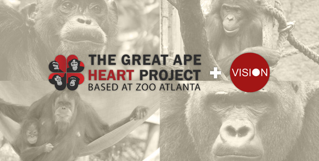 Prelude Dynamics Publishes Client Case Study Featuring Great Ape Heart Project