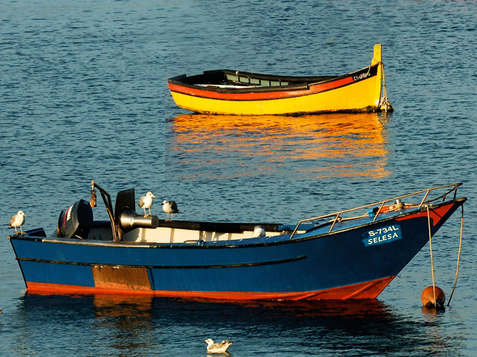 Two-Different-Boats