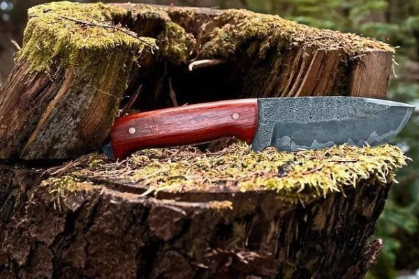 What You Must Know Before Buying a Survival Knife