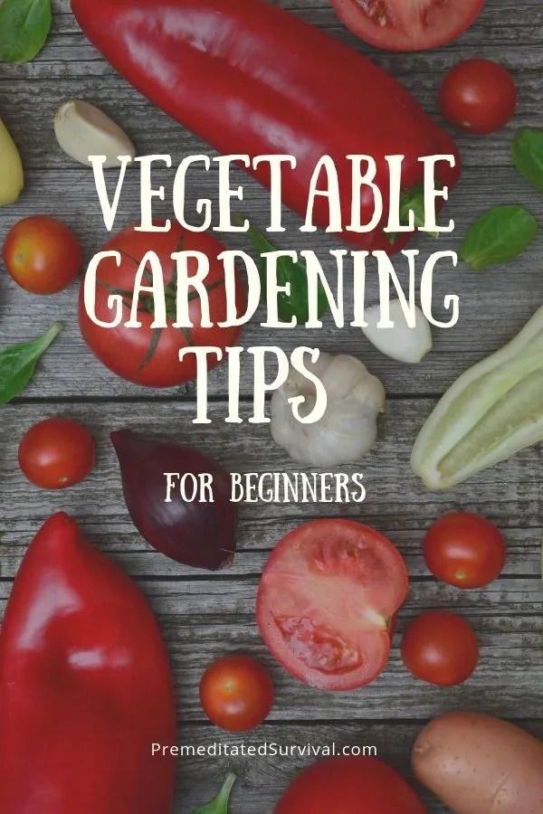vegetable gardening tips for beginners 1