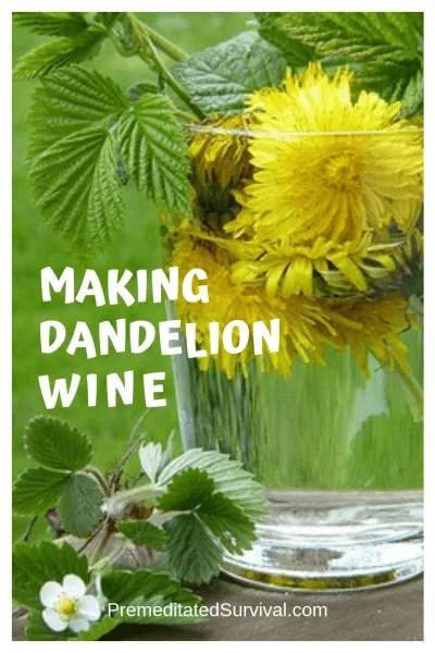 Making Dandelion Wine