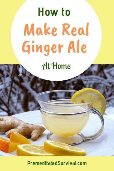 make real ginger ale