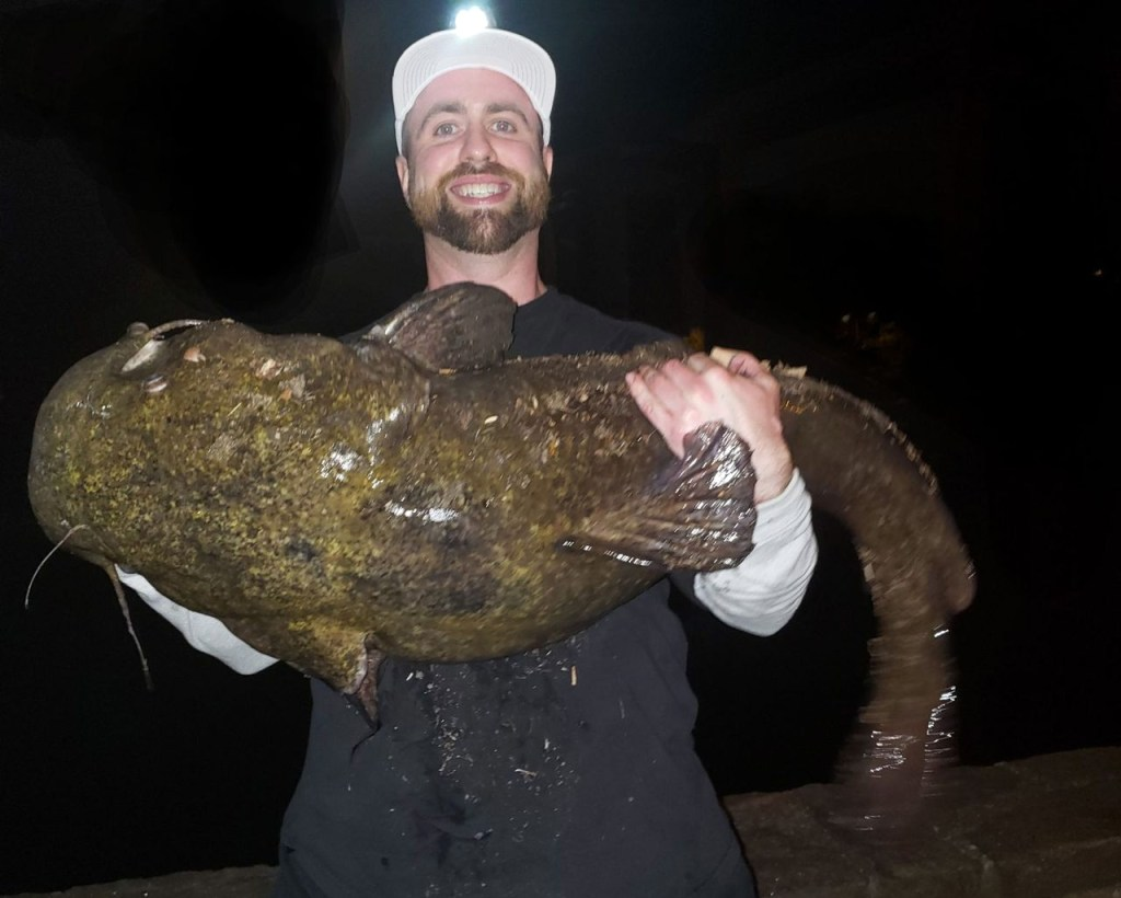 Pennsylvania State Record Flathead Catfish