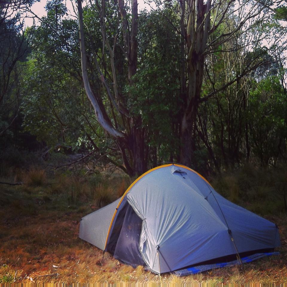 Shorter Camping Tent