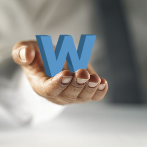 Welplan- Meeting new pensions obligations