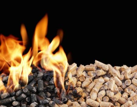 Drax Biomass Review