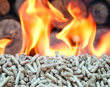 Welland Biomass